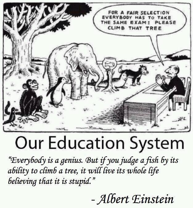 Our_education_system